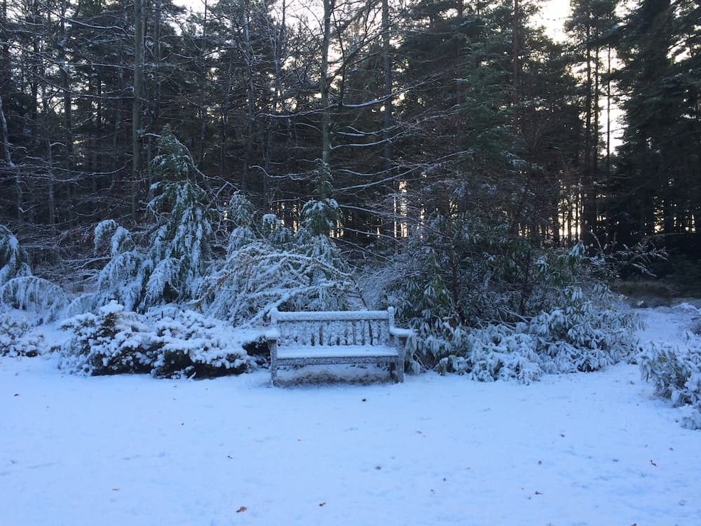 Winter Garden Bench at Blervie House