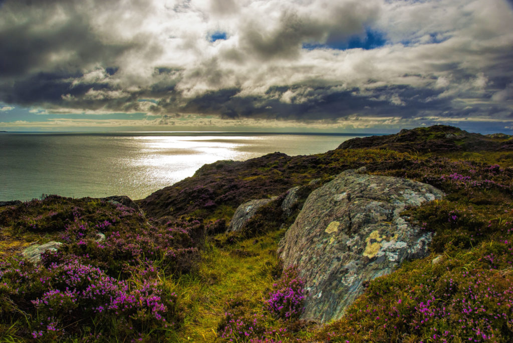 August in Moray with a Scottish view over the Moray Firth
