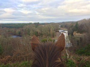 Horse Riding in Scotland 1