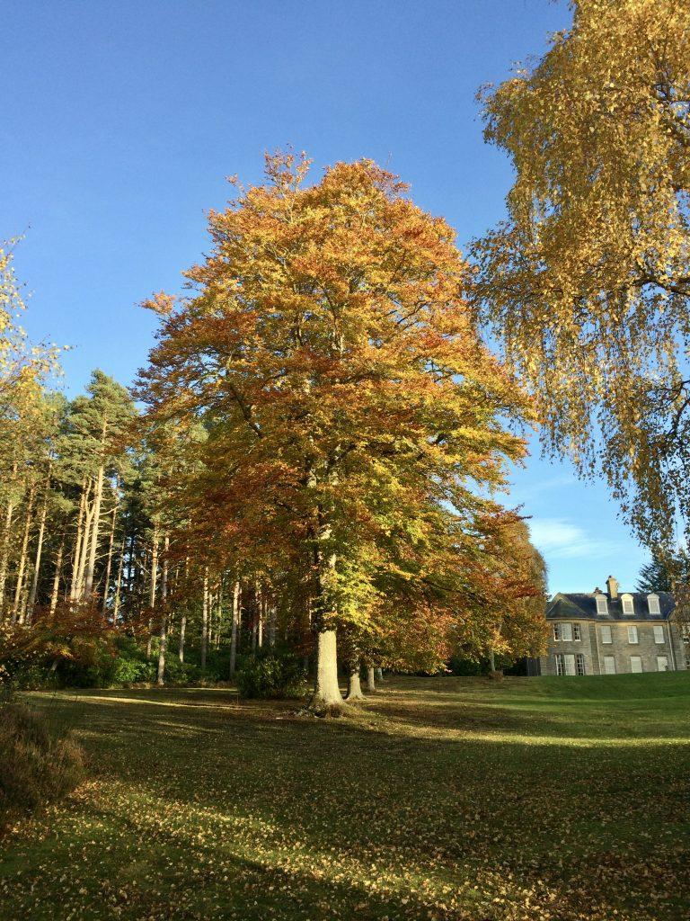 Blervie House Garden September in Moray